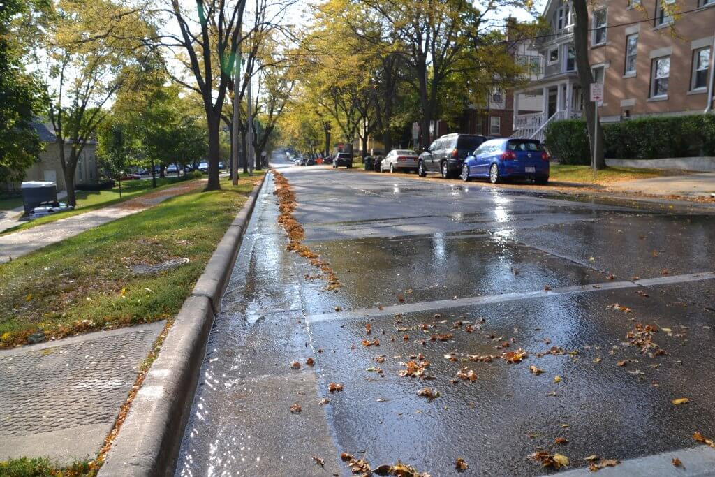Storm drain with wet street - Keeping our streets and storm drains free of debris is one step toward healthy lakes