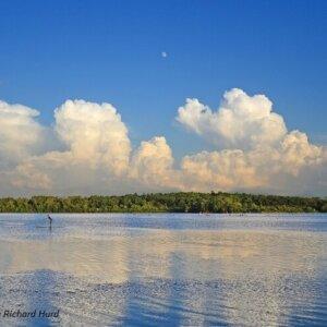Lake Wingra Summer Evening - Richard Hurd