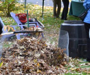 Leaf composting - Leaf management