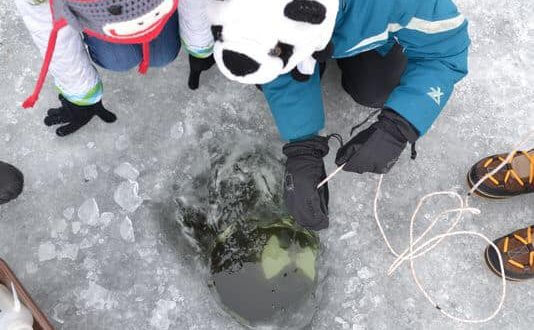 Frozen Assets ice fishing