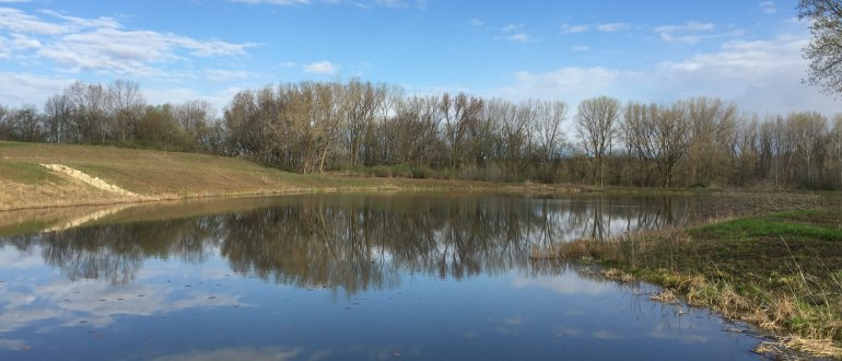 Upper Yahara treatment pond City of Madison water quality