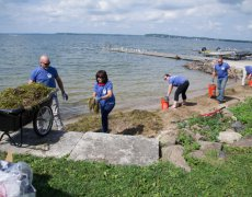 CG Schmidt Volunteer Day