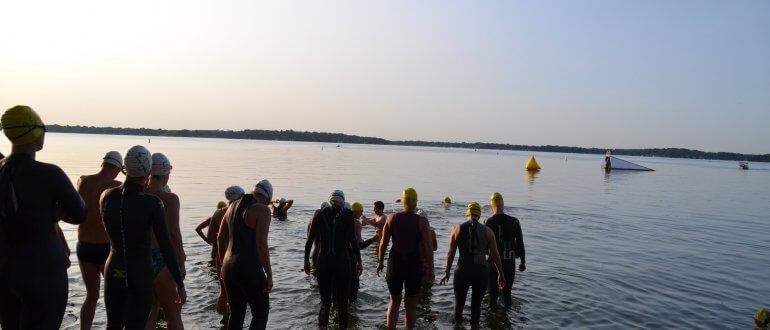 shoreline-swim