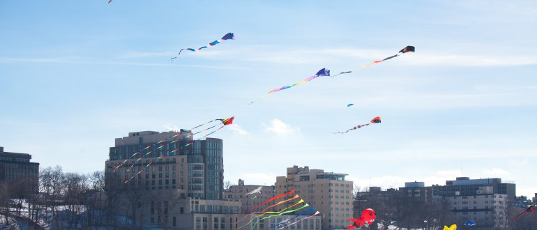 Frozen Assets - Kites above Lake Mendota