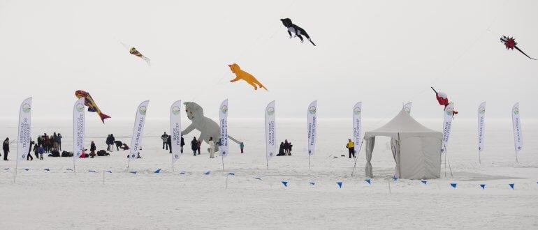 2019 Frozen Assets Kites