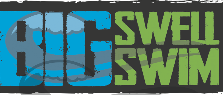 Big Swell Swim Madison Logo