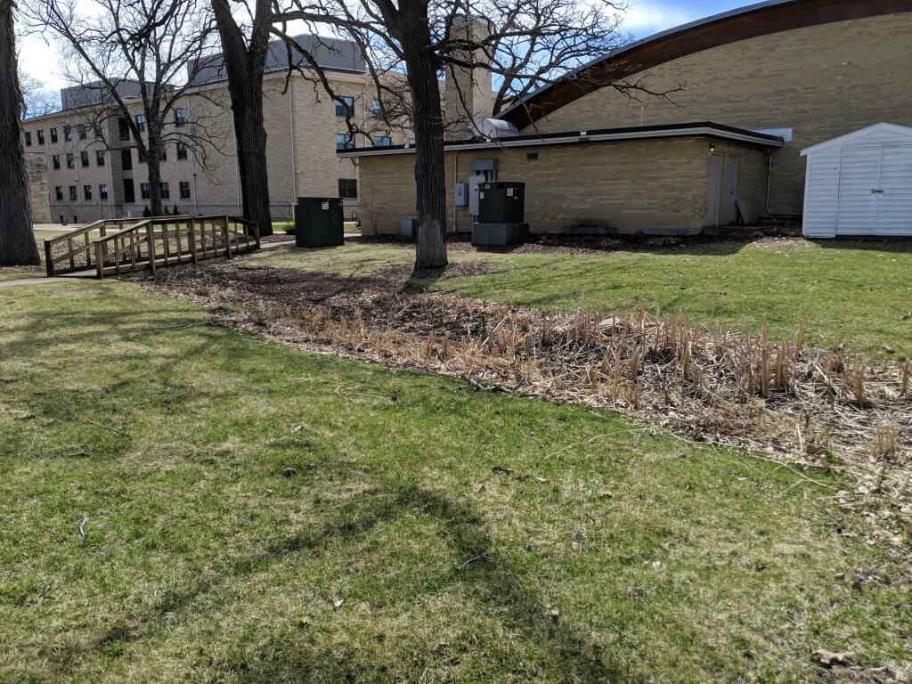 Grass Swale at Edgewood Campus in Madison