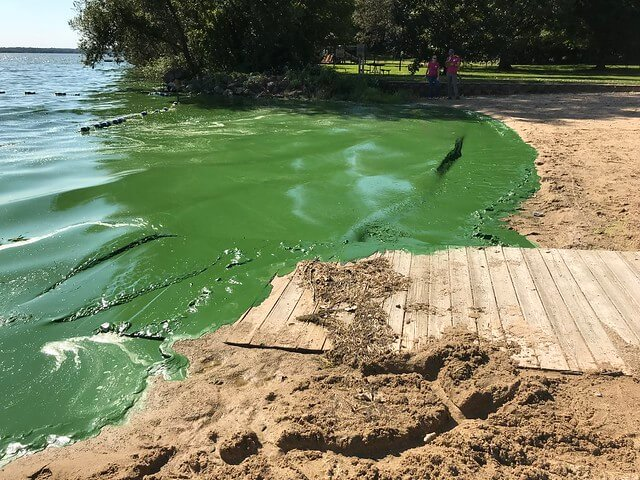 Lake Kegonsa Cyanobacteria, September 2018 - 2018 state of the lakes