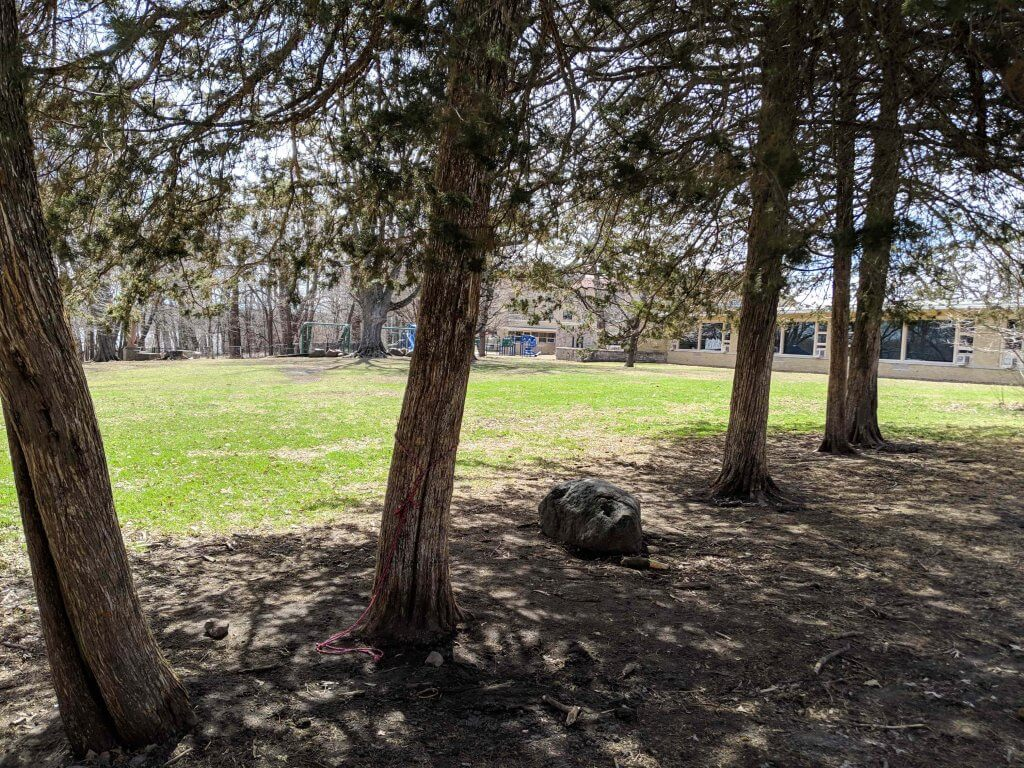 """""""Grandfather rocks"""" with trees on Edgewood Campus"""