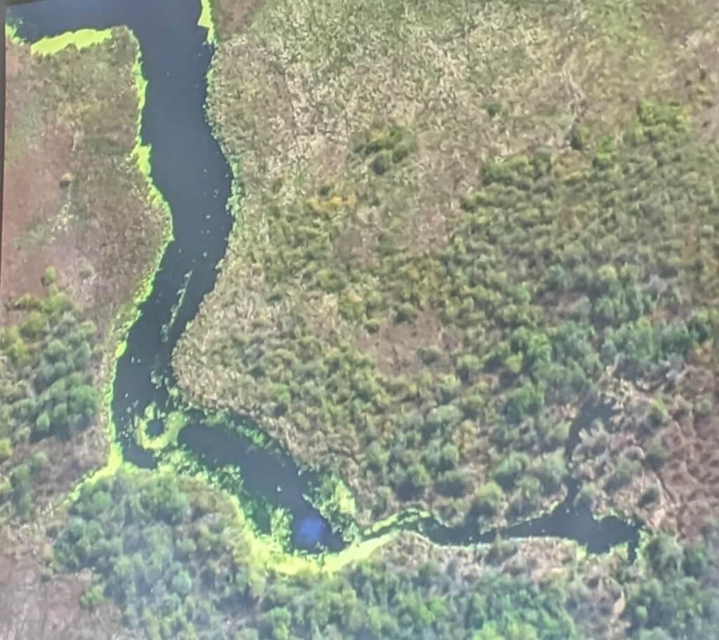 Deep Spring Creek - Waubesa Wetlands