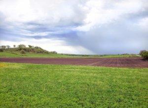 Pheasant Branch Conservancy Expansion - Acker Farm