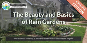 Yahara Lakes 101: The Beauty and Basics of Rain Gardens (Online Edition)