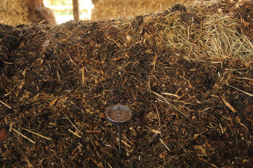 As the manure drys out and warms, it reduces in size and becomes compost