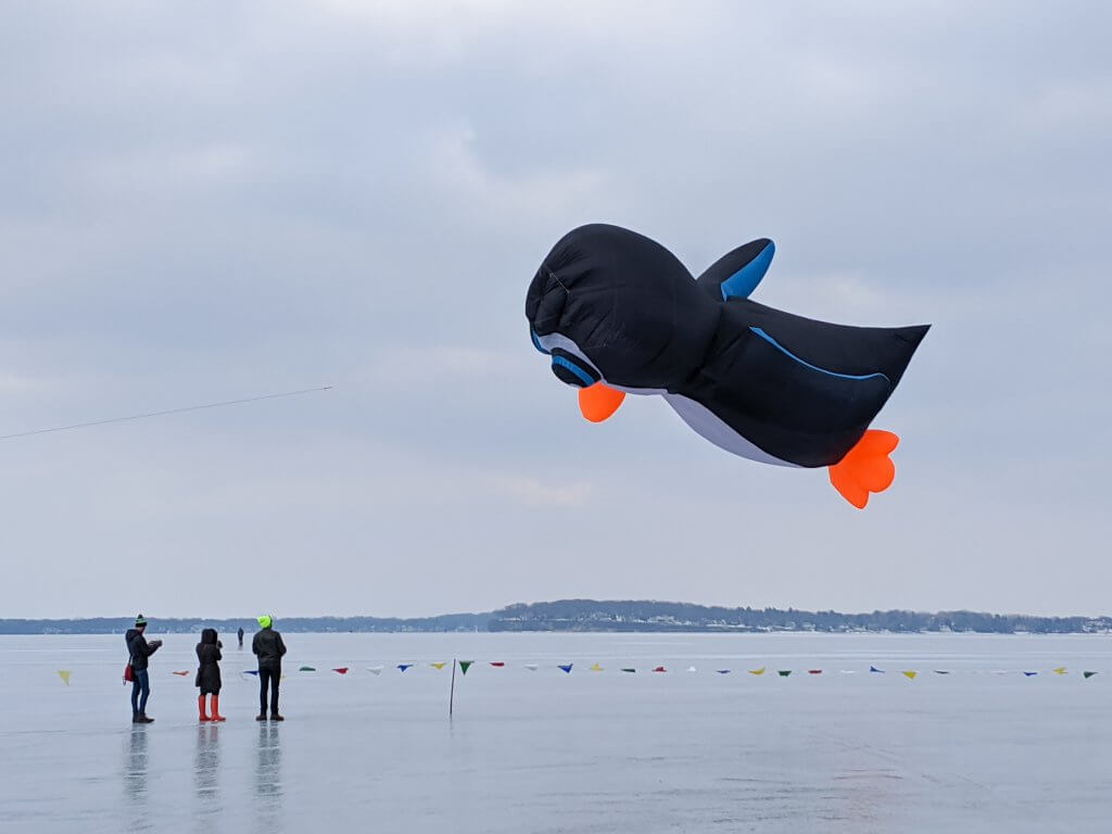 2020 Frozen Assets Kites