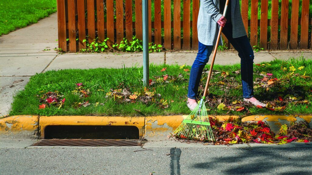 Rake for leaf-free streets - top 10 ways to help the lakes at home
