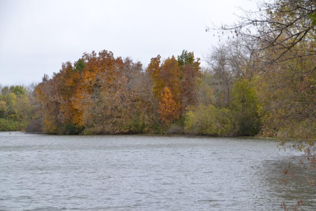 Lake Kegonsa Fall Colors