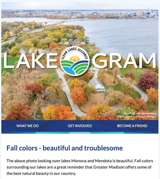 Lake-O-Gram 2020-11