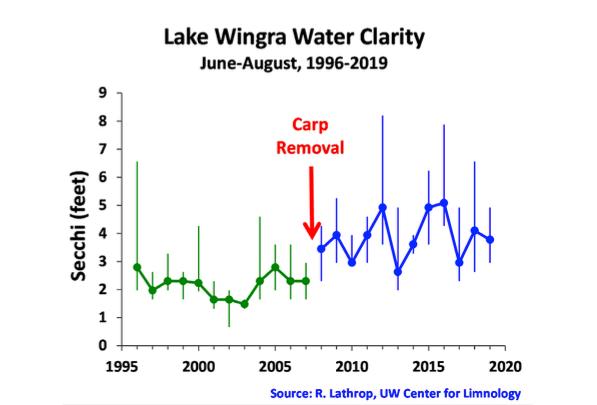 Lake Wingra Water Clarity 1996-2019
