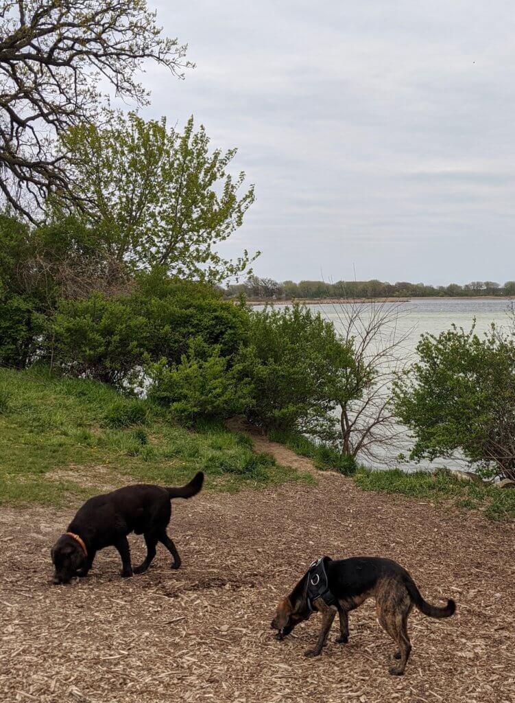 Yahara Heights County Park, Yahara River