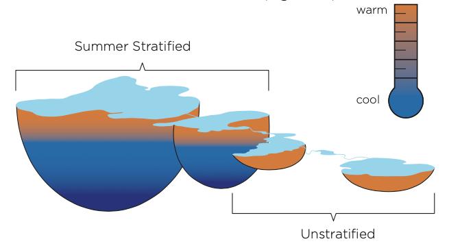 Seasonal Stratification - Yahara lakes